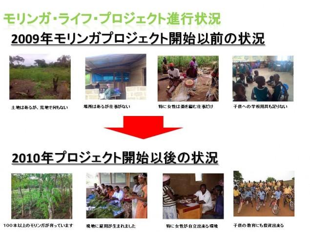 moringa_presentation_.pptx17