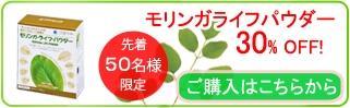 yoko-banner1.1 (1)