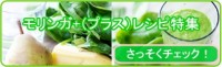 yoko-banner2.3-1