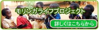 yoko-banner3.1
